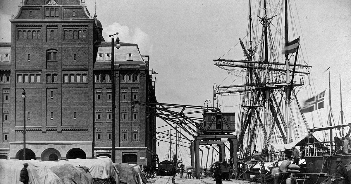 Kran og skibe i Københavns Frihavn