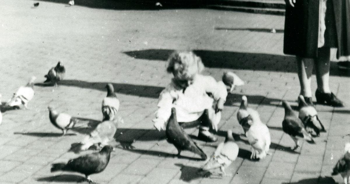 I erindringerne beskrives byens liv, som det er oplevet i private hjem og ude i gadebilledet. Her fodrer en lille pige duer på Rådhuspladsen. Foto: ukendt fotograf, 1943, Københavns Stadsarkiv.
